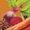 Carrot-Anise