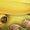 Banana Tumeric Linseed