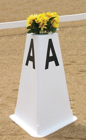 Dressage Arenas & Letters Image