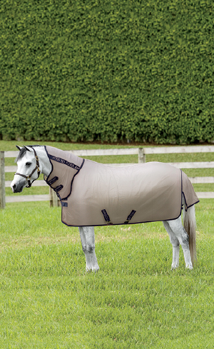 Pony Blankets Image