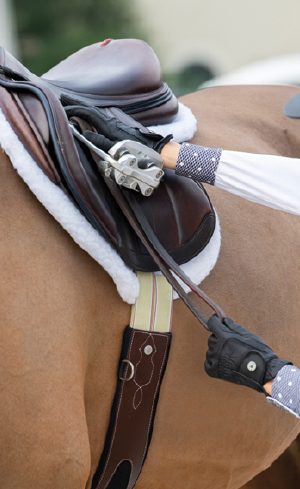 New Horse Tack & Accessories Image