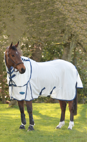 New Horse Clothing Image