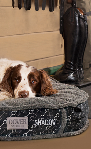 Dog Beds Image