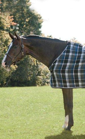 Dress Sheets Image