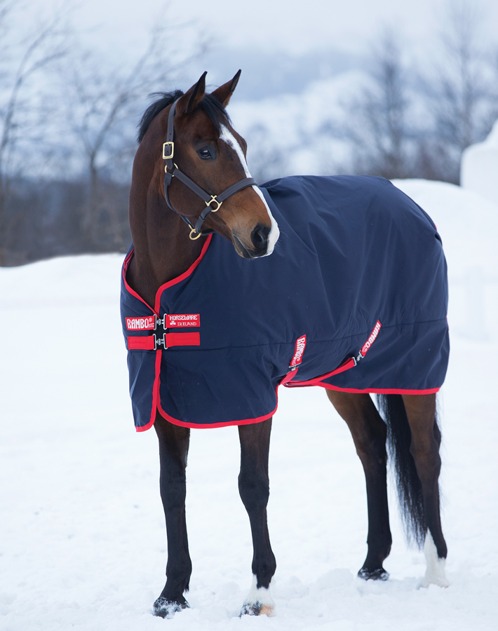 Horse Clothing - Shop Now!