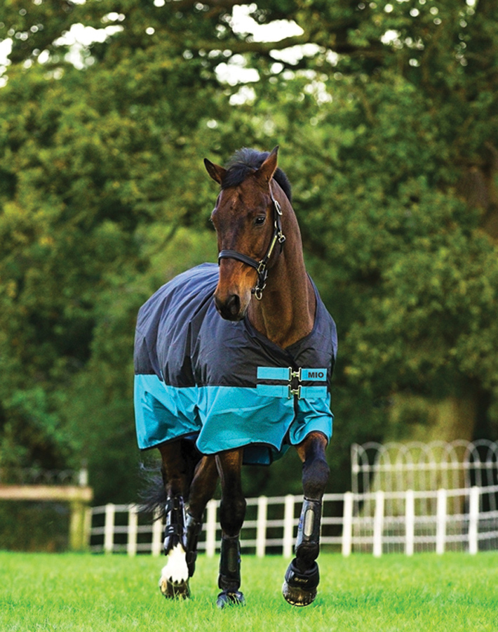 Horse Clothing Clearance - Save Now!