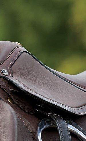 Adjustable Saddles Image
