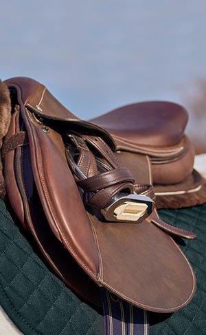 Saddles, Stirrups & Leathers Image