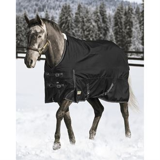 Kavalkade Duo Clincher Browband