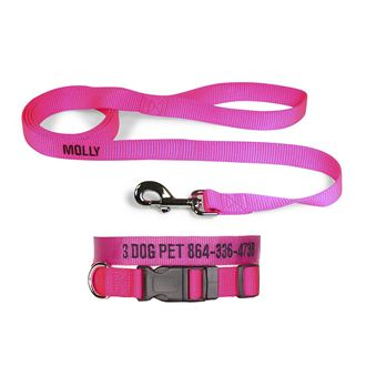 """3 Dog Pet Supply 1"""" Wide Personalized Dog Collar with Lead Combo"""