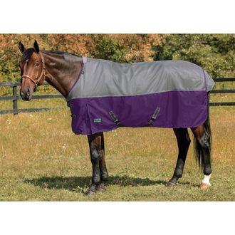 NorthWind® by Rider's InternationalPlus Heavyweight Turnout Blanket