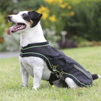 Sportz-Vibe® Extra-Small to Medium Dog Rug