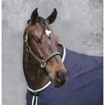 Suffolk® by Dover Saddlery® Triple-Stitched Halter