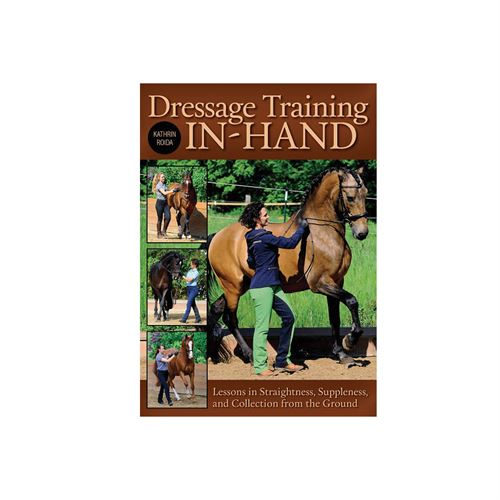 Dressage Training In Hand
