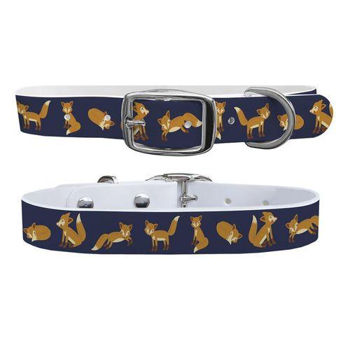 C4 Small Dog Collar
