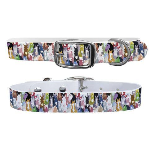 C4 Extra-Large Dog Collar